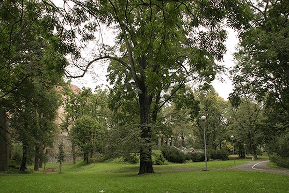 Parc Olomouc
