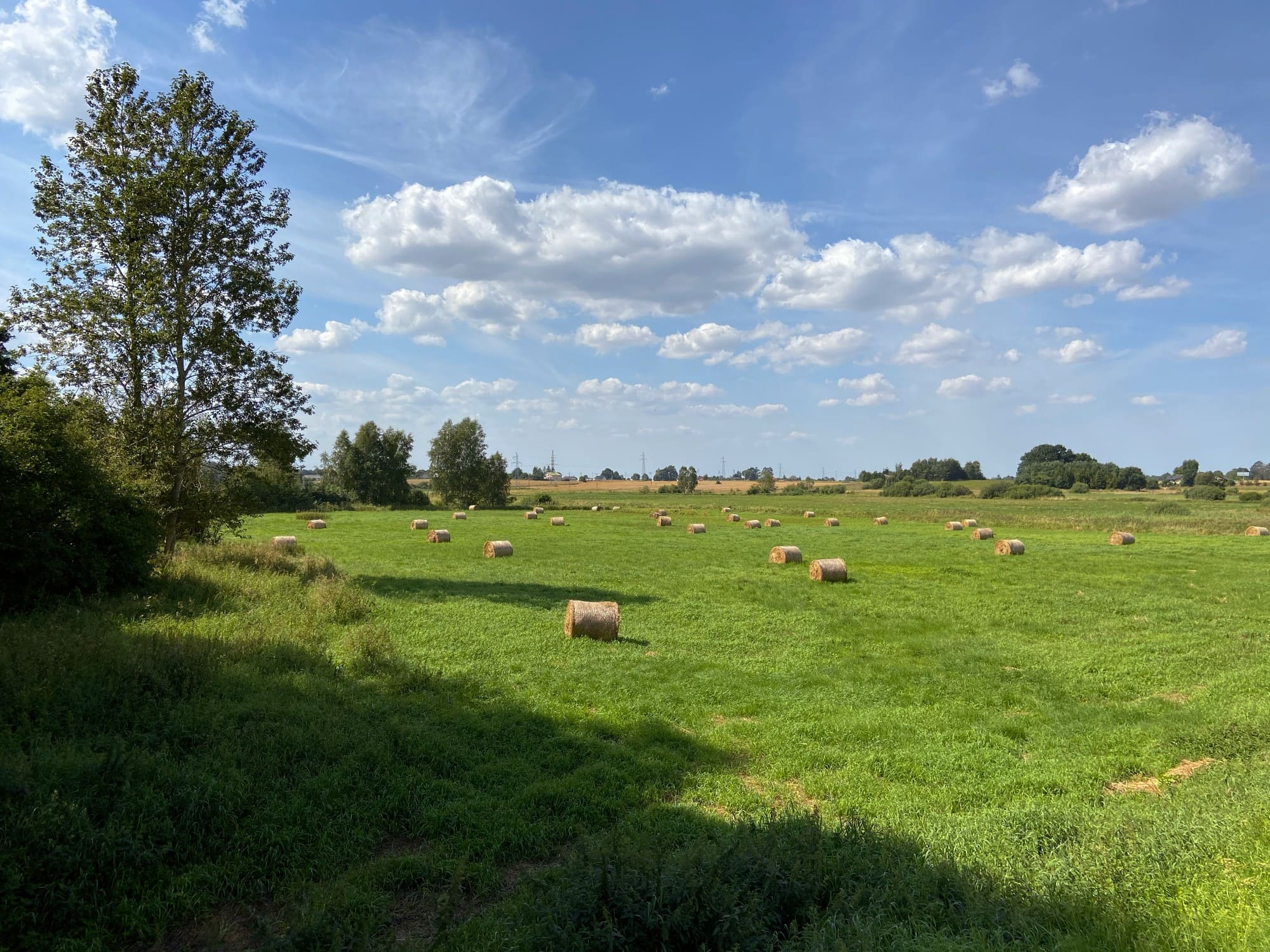 Road to Lebork